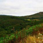 Countryside, Galicia